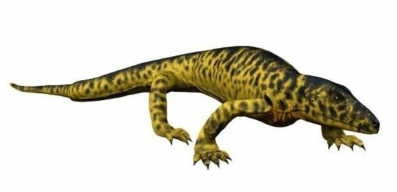 Artists reconstruction of Mycterosaurus.  Creative Commons License