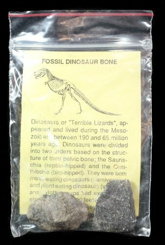 Bulk: Fossil Dinosaur Bone (Two) Pieces In Bag - Jurassic - Photo 1