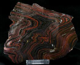 Buy Banded Tiger Iron Stromatolite - Australia (2.7 Billion Years) - #22498