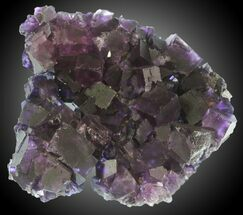 "Buy 4.4"" Purple Cubic Fluorite - Cave-In-Rock, Illinois - #31393"