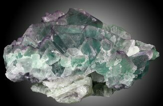 "Buy Sharp 5.32"" Fluorite on Aragonite & Quartz, China - #31858"