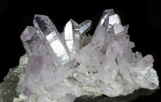 Spectacular Amethyst Crystal Cluster - Las Vigas, Mexico For Sale, #31946