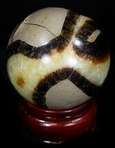 "Buy Beautiful 2.16"" Polished Septarian Sphere - #32017"