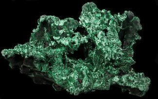 "Exceptional 6.7"" Fibrous Malachite Specimen - Congo For Sale, #33482"