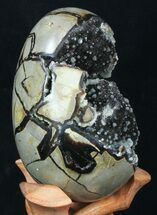 "Buy 5.3"" Septarian ""Dragon Egg"" Geode With Calcite Crystals - #33499"