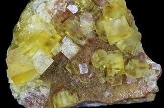 Fluorite  - Fossils For Sale - #32304
