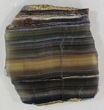 "Buy 4"" Polished Fluorite Slab - Purple, Green & Gold - #34849"