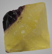 "1.68"" Yellow/Purple Cleaved Fluorite Octahedron - Illinois For Sale, #36158"