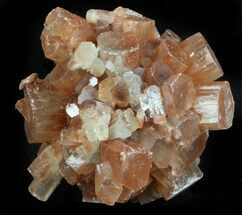 "Buy 1.7"" Aragonite Twinned Crystal Cluster - Morocco - #37309"