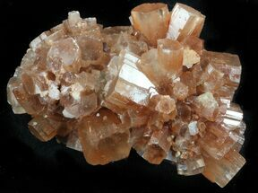 Aragonite - Fossils For Sale - #37332