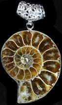 Fossil Ammonite Pendant - 110 Million Years Old For Sale, #37943