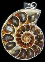 Fossil Ammonite Pendant - 110 Million Years Old For Sale, #37913
