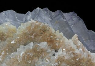 Fluorite and Calcite - Fossils For Sale - #38652
