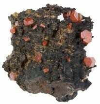 Vanadinite  - Fossils For Sale - #38481