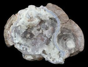 "Buy 3.4"" Crystal Filled Dugway Geode (Polished Half) - #38866"