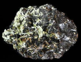 Garnet, Mica & Epidote - Fossils For Sale - #38727