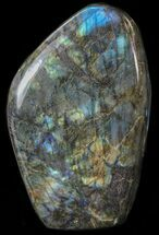 Labradorite - Fossils For Sale - #41736