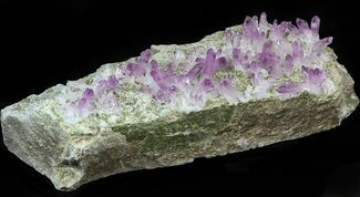 Quartz var. Amethyst - Fossils For Sale - #42213
