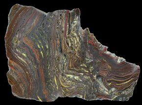 Tiger Iron Stromatolite - Fossils For Sale - #42594