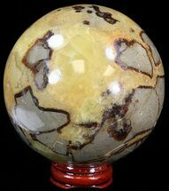 Septarian - Fossils For Sale - #43857