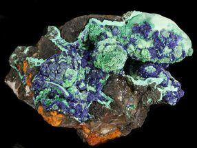 Malachite with Azurite - Fossils For Sale - #43818
