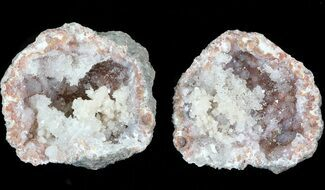 "1.25"" Keokuk ""Red Rind"" Geode - Iowa For Sale, #44000"