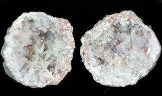 "1.65"" Keokuk ""Red Rind"" Geode - Iowa For Sale, #44006"