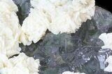 "6.9"" White Dolomite Flowers On Fluorite - China - #44658-2"