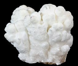 Aragonite & Calcite - Fossils For Sale - #44982