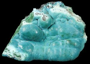 "Buy 4.9"" Chrysocolla on Botryoidal Malachite - Congo - #45280"