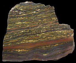 Tiger Iron Stromatolite - Fossils For Sale - #46806