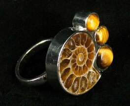 Buy Ammonite Ring With Tigers Eye - #4507