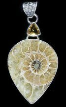 Buy Ammonite Fossil Pendant - Sterling Silver - #48511