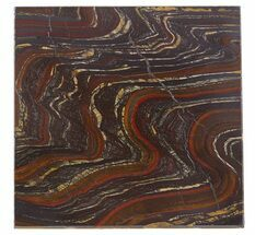 "4"" Tiger Iron Stromatolite ""Shower Tile"" - 2.7 Billion Years Old For Sale, #48803"