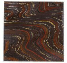 Tiger Iron Stromatolite - Fossils For Sale - #48804