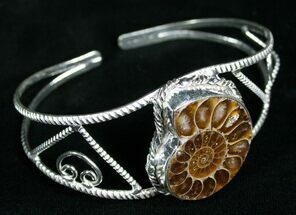 Buy Beautiful Ammonite Fossil Bracelet - #4555
