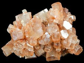 Aragonite - Fossils For Sale - #49290