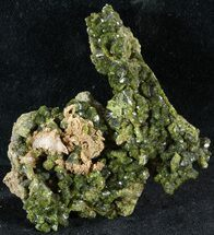 "2.7"" Lustrous, Epidote Crystal Cluster - Morocco For Sale, #49409"