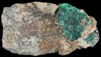 Malachite - Fossils For Sale - #49455