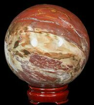"4.3"" Colorful Petrified Wood Sphere For Sale, #49736"
