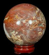 "4.3"" Colorful Petrified Wood Sphere - Madagascar For Sale, #49736"