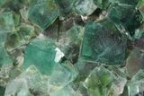 "Gorgeous 8.2"" Fluorite & Galena Plate -  Rogerley Mine - #32398-3"