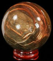 "2.6"" Colorful Petrified Wood Sphere For Sale, #49745"