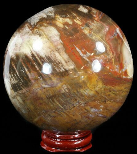 "3.4"" Colorful Petrified Wood Sphere"