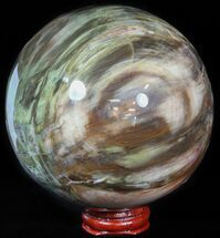 "4"" Colorful Petrified Wood Sphere For Sale, #49766"