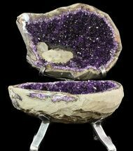 Quartz var. Amethyst - Fossils For Sale - #50982