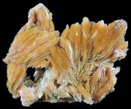 Barite & Galena - Fossils For Sale - #51471