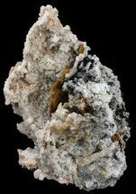 Calcite & Aragonite - Fossils For Sale - #51834