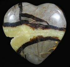 Septarian - Fossils For Sale - #54702