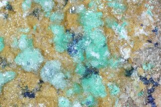 "5.2"" Rosasite, Selenite On Ferroan Dolomite - Morocco For Sale, #55484"